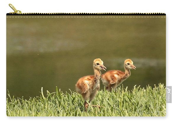 Two Chicks Carry-all Pouch
