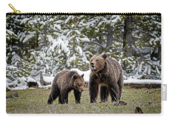 Two Grizzly Bears Carry-all Pouch