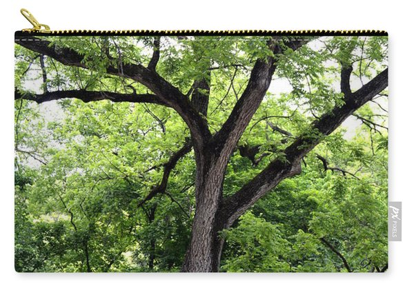 Two Tone Tree Carry-all Pouch