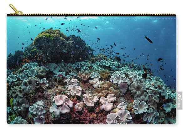 Underwater Community Carry-all Pouch