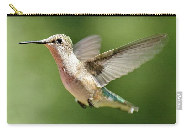Untitled Hum_bird_two Carry-all Pouch