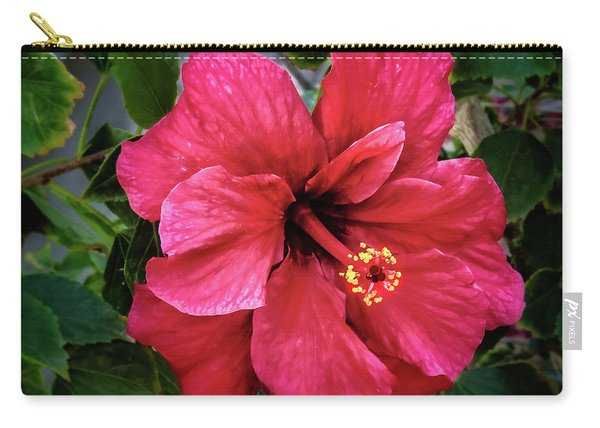 Vignetted Hibiscus Carry-all Pouch