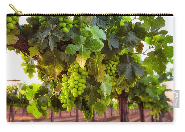 Vineyard 3 Carry-all Pouch