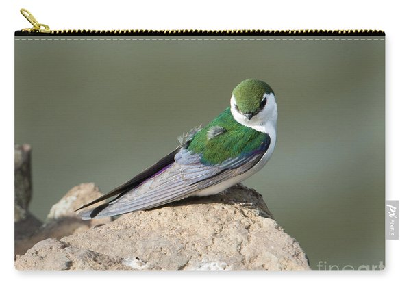 Violet-green Swallow Carry-all Pouch