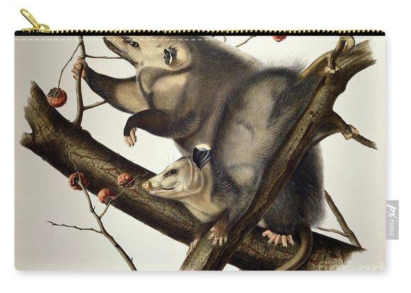 Virginian Opossum Carry-all Pouch
