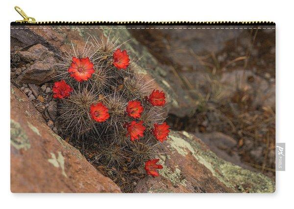 Vivid Cactus Flowers Saguaro National Park Carry-all Pouch