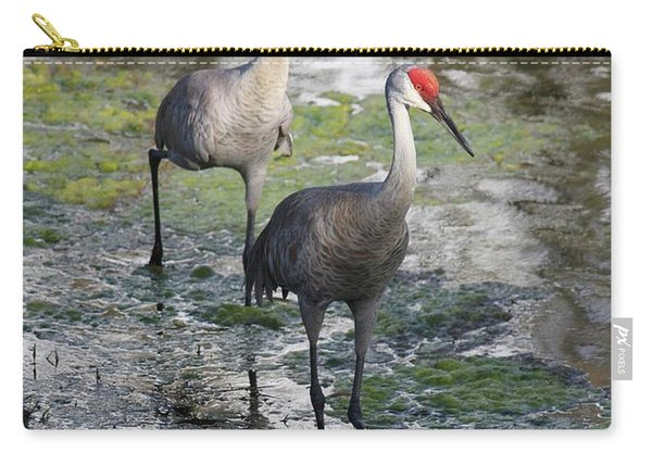 Wading Sandhills Carry-all Pouch