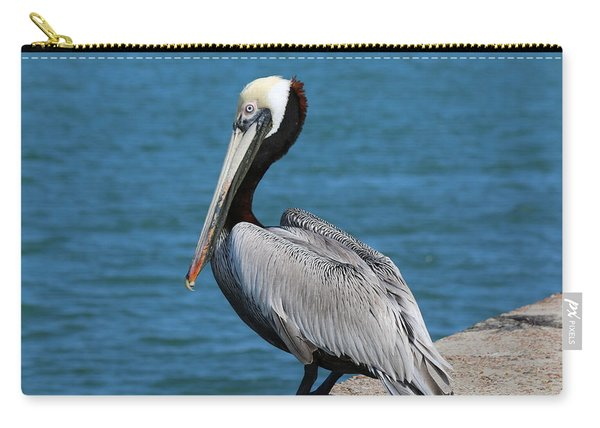 Carry-all Pouch featuring the photograph Waiting For A Fish - 3 by Christy Pooschke