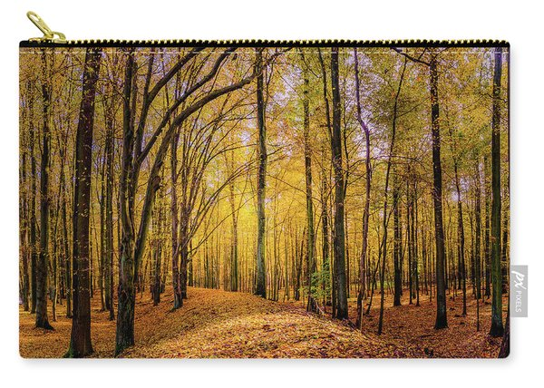 Carry-all Pouch featuring the photograph Walkway In The Autumn Woods by Dmytro Korol