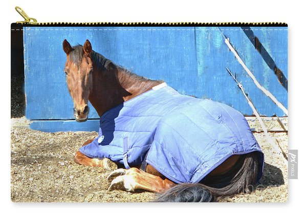 Warm Winter Day At The Horse Barn Carry-all Pouch