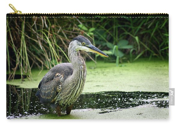 Wary Blue Heron Carry-all Pouch