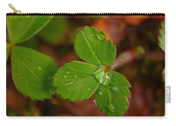 Water Drop On A Green Plant Carry-all Pouch
