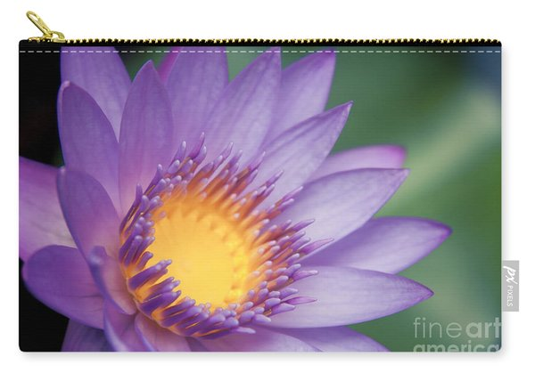 Water Lily Nymphaea Nouchali Star Lotus Carry-all Pouch