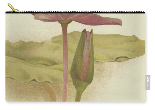 Water Lily  Nymphaea Zanzibarensis Carry-all Pouch