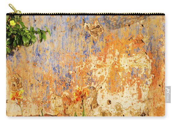 Weathered Wall 07 Carry-all Pouch