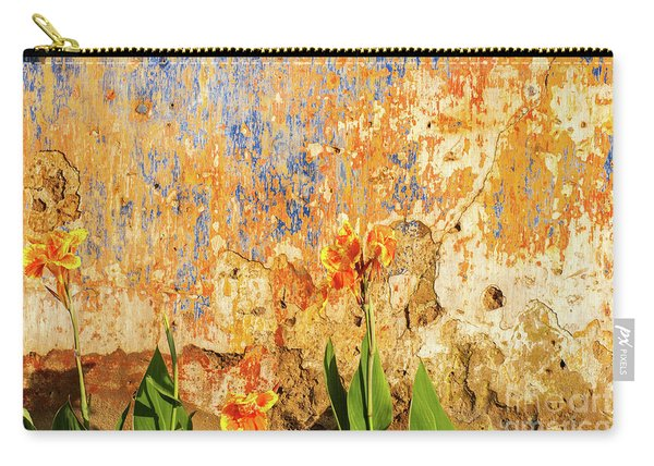 Weathered Wall 08 Carry-all Pouch