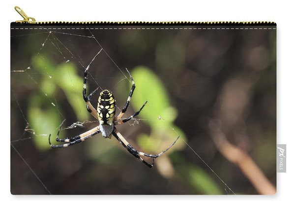 Web Builder Carry-all Pouch