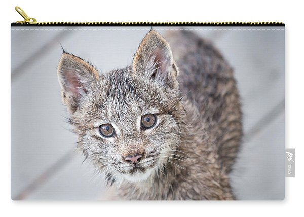 Carry-all Pouch featuring the photograph What Are You by Tim Newton