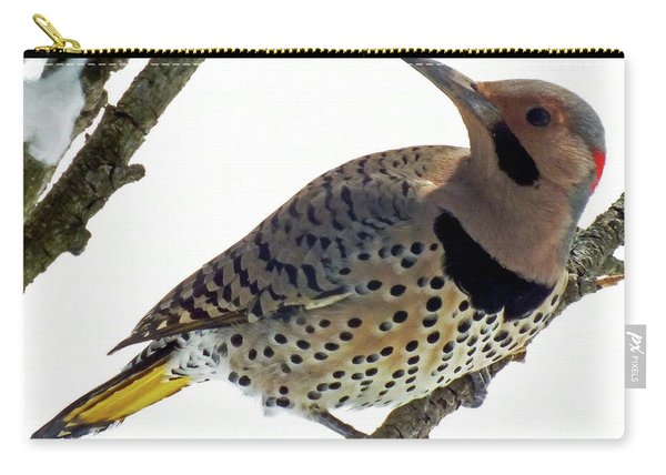 What Was That - Northern Flicker Carry-all Pouch