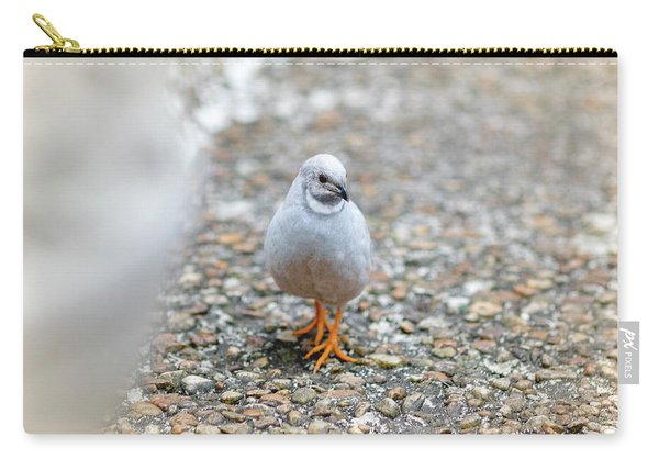 Carry-all Pouch featuring the photograph White Bird Sneaking Through by Raphael Lopez