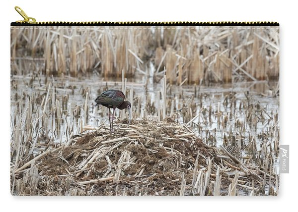 White-faced Ibis 2017-2 Carry-all Pouch