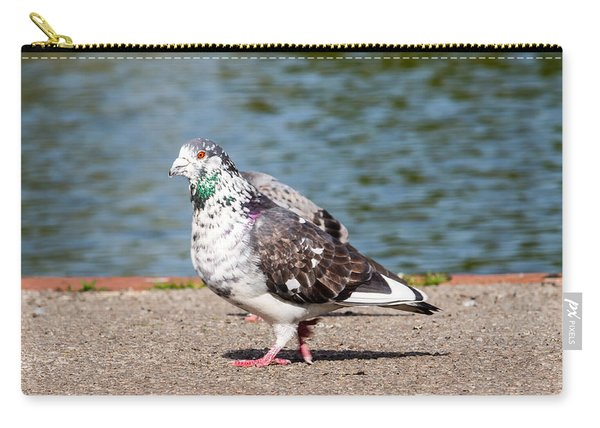 White-gray Pigeon Carry-all Pouch