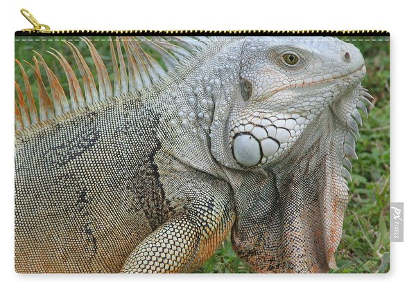 White Lizard Carry-all Pouch