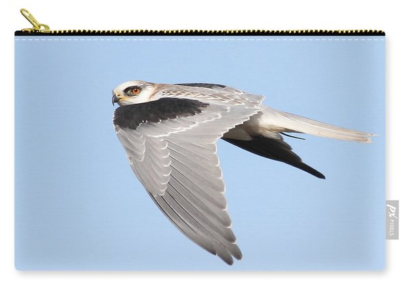 White-tailed Kite Hawk In Flight . 7d11110 Carry-all Pouch