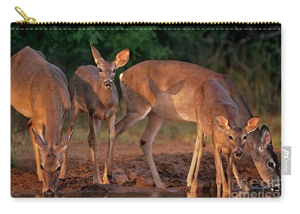 Whitetail Deer At Waterhole Texas Carry-all Pouch