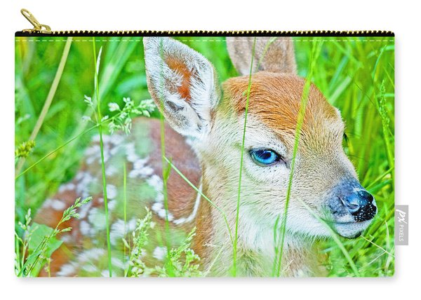 Whitetailed Deer Fawn Carry-all Pouch