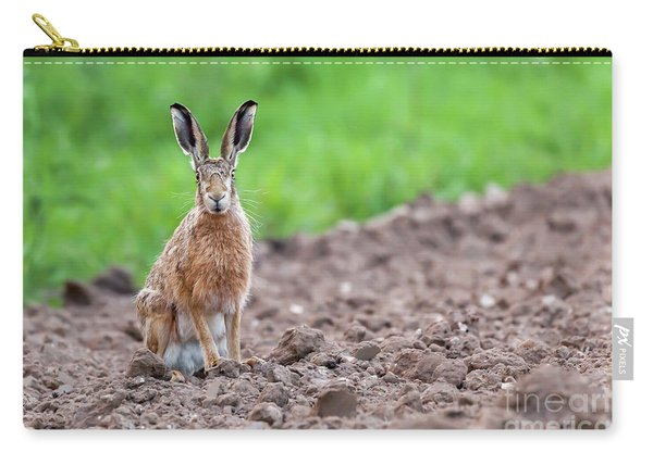 Wild Hare Sat Staring At Camera Carry-all Pouch