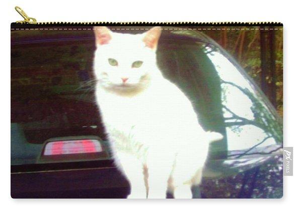 Will Wash Car For Treats Carry-all Pouch