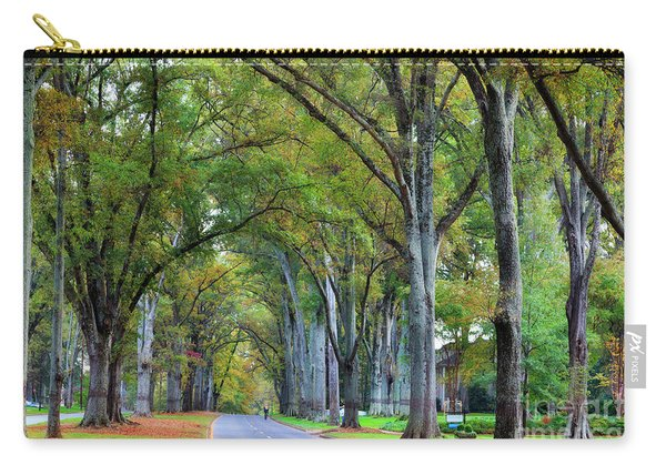 Willow Oak Trees Carry-all Pouch