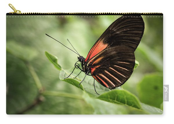 Wings Of The Tropics Butterfly Carry-all Pouch