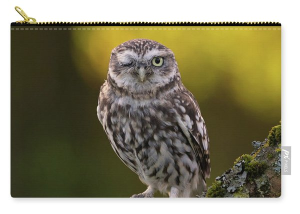 Winking Little Owl Carry-all Pouch