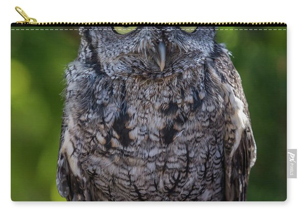 Winston Wildlife Art By Kaylyn Franks Carry-all Pouch