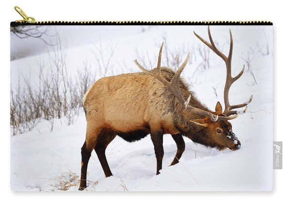Winter Bull Carry-all Pouch