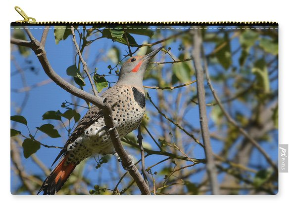 Winter Flicker Carry-all Pouch