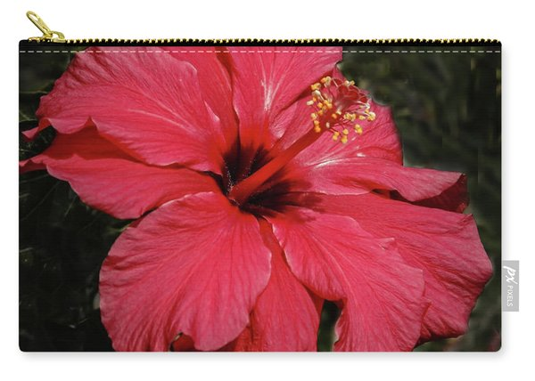 Winter Hibiscus Carry-all Pouch