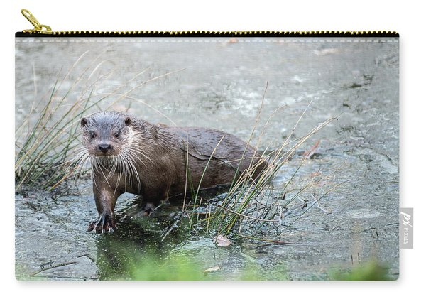 Winter Otter Carry-all Pouch