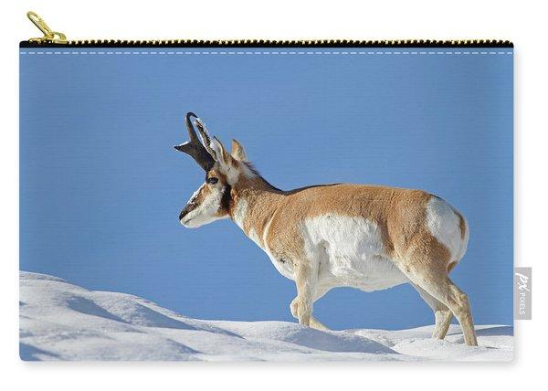 Winter Pronghorn Buck Carry-all Pouch