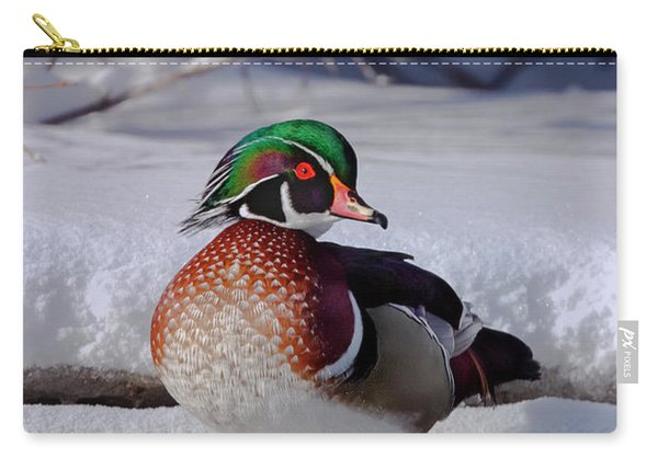 Wood Duck In Winter Snow And Ice, Montana, Usa Carry-all Pouch