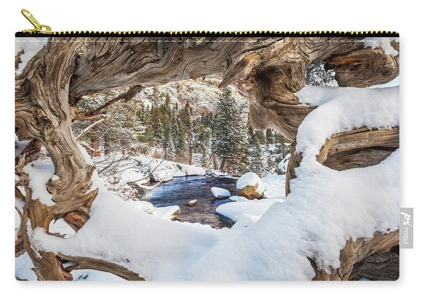 Wooden Window View  Carry-all Pouch