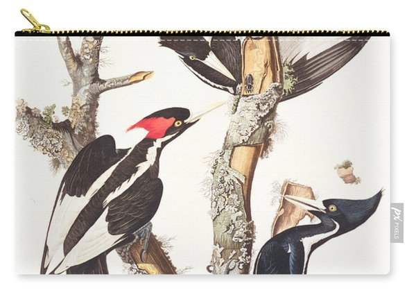 Woodpeckers Carry-all Pouch