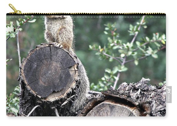 Woodpile Squirrel Carry-all Pouch