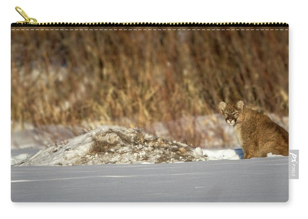 Yampa Glare  Carry-all Pouch