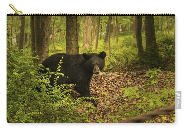 Yearling Black Bear Carry-all Pouch