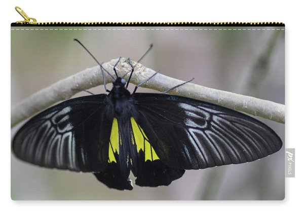 Carry-all Pouch featuring the photograph Yellow And Black Butterfly by Raphael Lopez