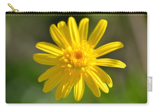 Carry-all Pouch featuring the photograph Yellow Fireworks by Michael Colgate