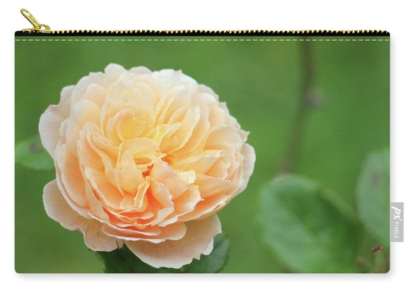 Yellow Rose In December Carry-all Pouch